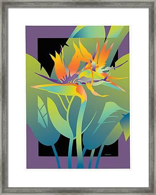 Black Paradise Framed Print