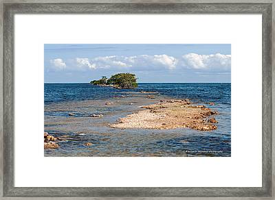 Black Point Marina - Cutler Bay Framed Print
