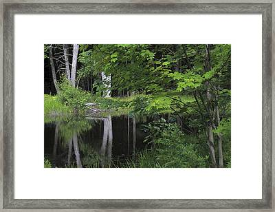 Framed Print featuring the photograph Black Pond And Maple by Colleen Williams