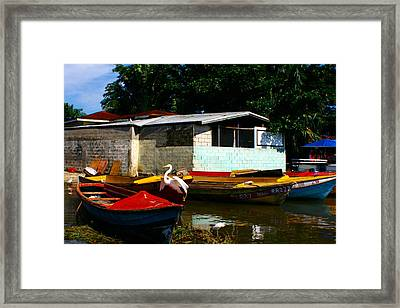 Framed Print featuring the photograph Black River Crane by Jon Emery
