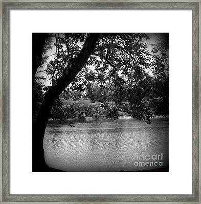 Black River Framed Print