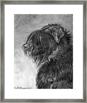 Black Russian Terrier Dog Portrait  Framed Print by Olde Time  Mercantile