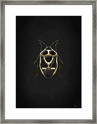 Black Shieldbug With Gold Accents On Black Canvas Framed Print