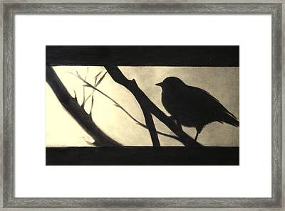 Black Side Beauty Framed Print by Atinderpal Singh