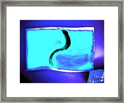 Black Snake On Aqua Framed Print by Phoenix De Vries