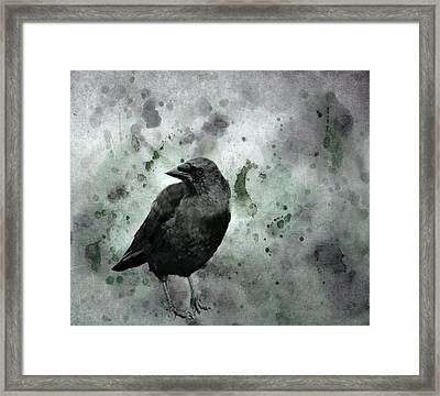 Brackish Black  Framed Print