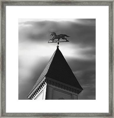 Black Stallion Weathervane Framed Print by Larry Butterworth