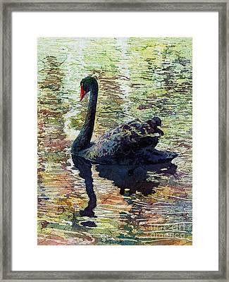Black Swan Framed Print by Hailey E Herrera
