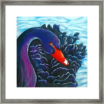 Black Swan Framed Print by Rene Capone