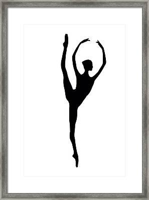 Black Swan Framed Print by Steve K