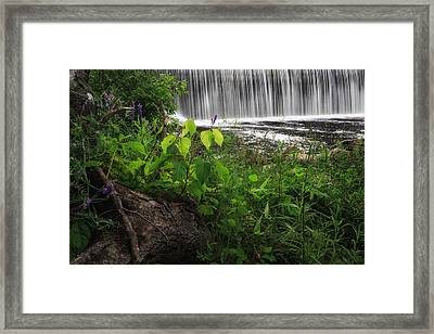 Blackberry River Framed Print by Bill Wakeley