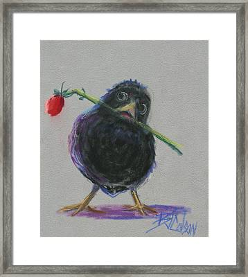 Blackbird Love Framed Print