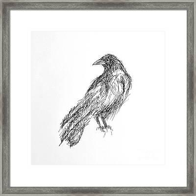 Framed Print featuring the drawing Blackbird  by Nicole Gaitan