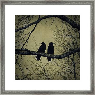 Blackbirds On A Branch Framed Print by Patricia Strand