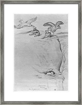 Blackburn Birds, 1863 Framed Print