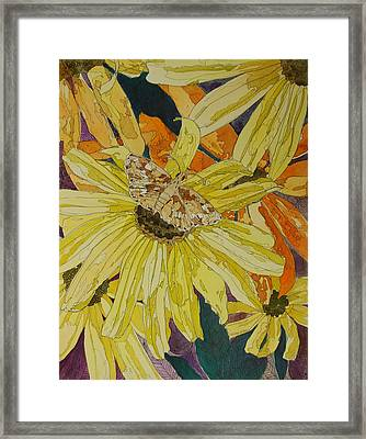 Blackeyed Susans And Butterfly Framed Print by Terry Holliday