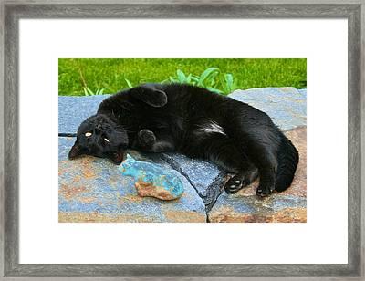 Blackjack Posing Framed Print