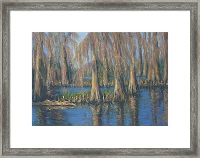 Blackwater Blue At Magnolia Gardens Framed Print