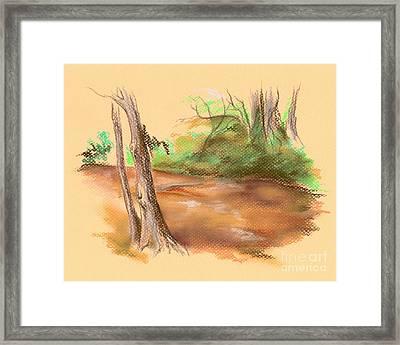 Blackwater Creek Framed Print by MM Anderson