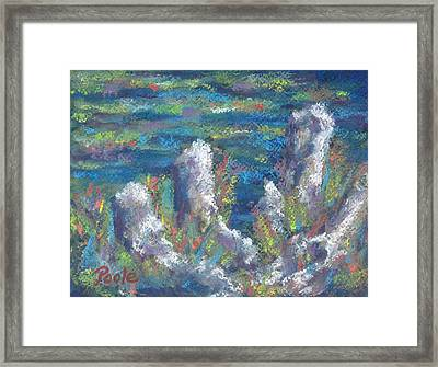 Blackwater Cypress Knees Framed Print