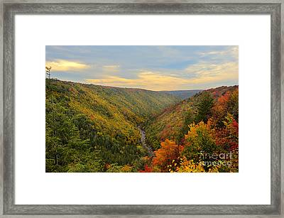 Blackwater Gorge With Fall Leaves Framed Print by Dan Friend