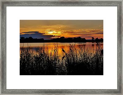 Blackwater Morning Framed Print