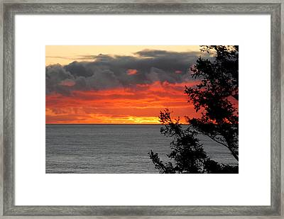Blame It On The Sun Framed Print by Mamie Gunning