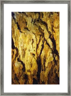 Blanchard Springs Caverns-arkansas Series 04 Framed Print by David Allen Pierson
