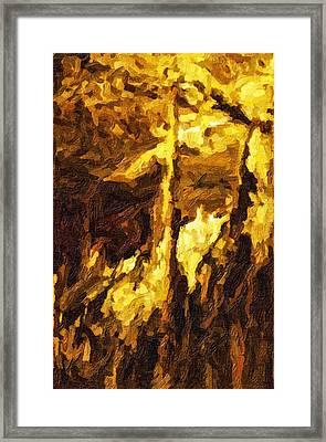 Blanchard Springs Caverns-arkansas Series 07 Framed Print by David Allen Pierson