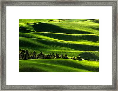 Blanketed In Green Framed Print by Todd Klassy