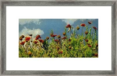 Blanketing The Sky Framed Print by Jeff Kolker