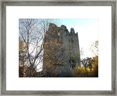 Framed Print featuring the photograph Blarney Castle by Alan Lakin