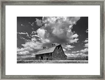 Blasdel Barn - Black And White Framed Print