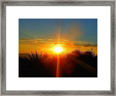 Blaze In The Desert Framed Print