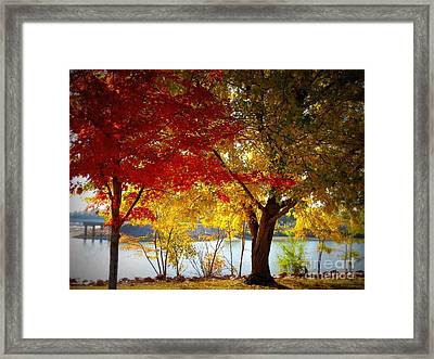 Blaze Of Color Framed Print by Mary Willrodt