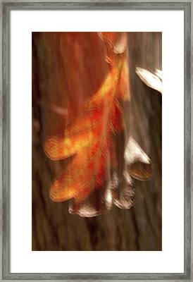 Blaze Of Glory Framed Print