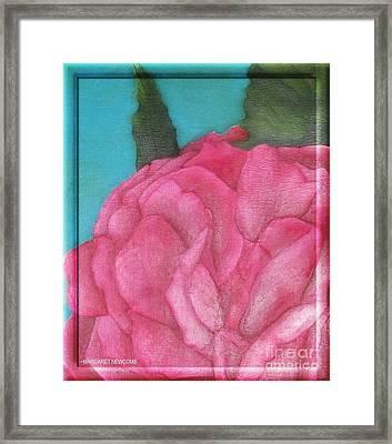 Blaze Rose Oil On Canvas Framed Print by Margaret Newcomb