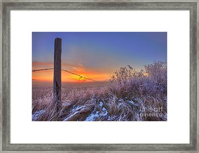 Blazing Autumn Morning Framed Print by Dan Jurak