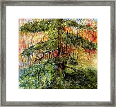 Blazing Color Framed Print