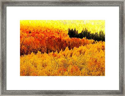 Blazing Mountainside Framed Print by The Forests Edge Photography - Diane Sandoval