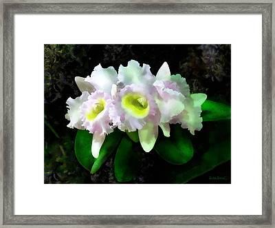 Blc Mary Ellen Underwood Krull-smith Framed Print by Susan Savad