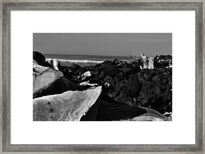 Bleached  Framed Print by Tara Miller