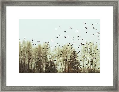 Bleak Mid-winter Framed Print by Rebecca Cozart