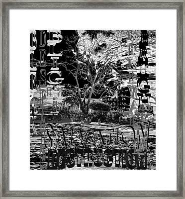Bleak Renewal Framed Print by Pharris Art