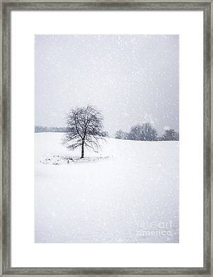 Bleakest Essence Framed Print by Evelina Kremsdorf