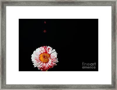 Bleeding Flower Framed Print