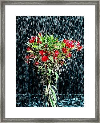 Blessed Rain Framed Print by Carlos Vieira