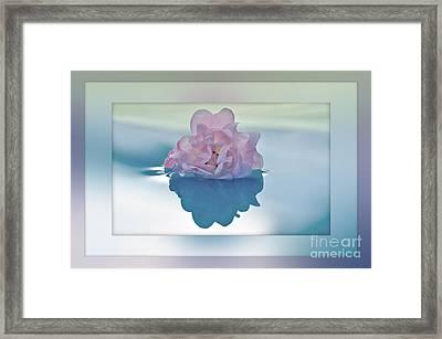 Blend Of Pastels Framed Print by Kaye Menner