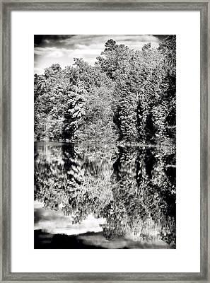 Blended Nature Framed Print