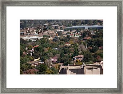 Blending In  Framed Print by Paul Job